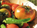 Cresce il fatturato del settore alimentare in Piemonte