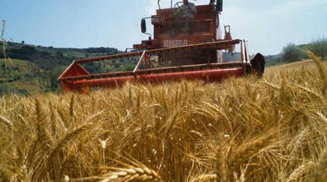 A Mombercelli un corso di formazione per gli agricoltori