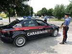 Denunciate undici persone in tutta la Provincia dai Carabinieri durante un servizio mirato di controllo