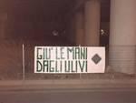 Anche ad Asti l'azione di Casa Pound ''la Foresta che Avanza'' contro gli abbattimenti degli ulivi nel Salento