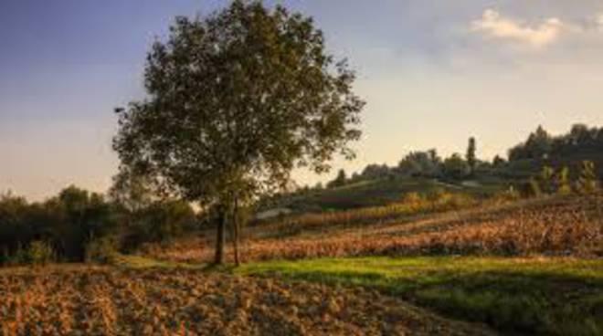 """Grazzano Badoglio, sabato 25 """"Camminare il Monferrato"""" sarà un vero piacere"""