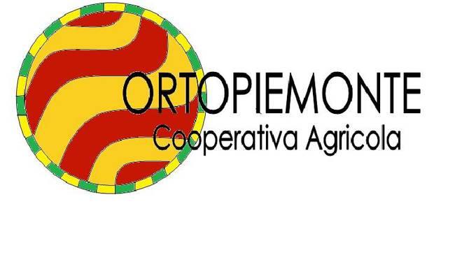Rinnovato l'accordo di filiera per le produzioni orticole piemontesi con la Sacla'