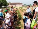 Agricola, un'aula a cielo aperto all'Istituto per l'Agricoltura di Viatosto