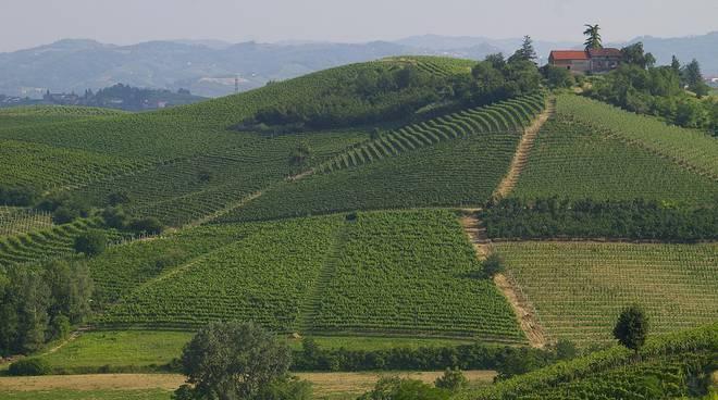 Piccole e medie imprese, caccia e paesaggi vitivinicoli del sito Unesco oggetto della riunione della Giunta Regionale