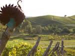 Dal 16 al 21 ottobre 30 manager Unesco nei territori di Langhe-Roero e Monferrato