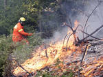 Dichiarato lo stato di grave pericolosità Incendi Boschivi per tutto il Piemonte; scattano i divieti