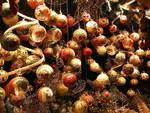 Isola d'Asti, martedì 8 tutta l'emozione del Natale
