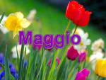Intenso mese di maggio alla Rava e la Fava: tutte le iniziative