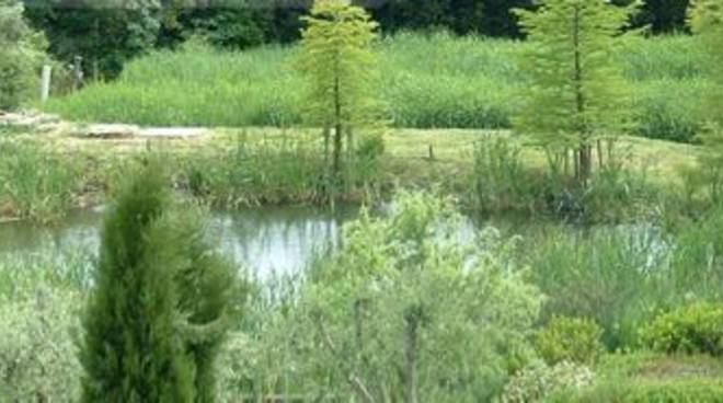 Alba, venerdì 27 il convegno sulla gestione delle acque di scarico dell'azienda agricola