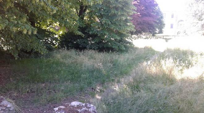 """Angela Quaglia scrive al sindaco: ''Quando si taglierà l'erba al Parco della Certosa?"""""""