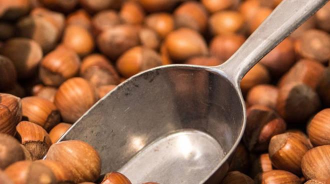 A Castagnole Lanze celebrata la Nocciola Tonda e Gentile del Piemonte; in ascesa la quotazione