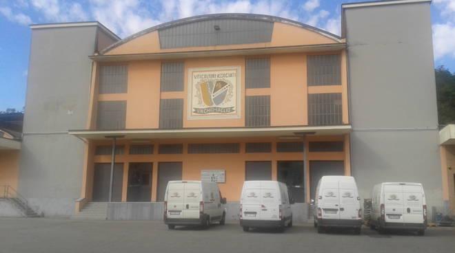 """La Viticoltori Associati di Vinchio e Vaglio Serra nella """"top ten"""" della Cantine cooperative italiane"""