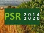 Piano Sviluppo Rurale: pubblicate le graduatorie per l'insediamento dei giovani e per le misure agroambientali: troppe imprese escluse