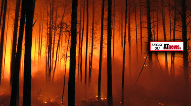 Incendi boschivi: siglata intesa tra Piemonte, Liguria e Lombardia