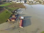 Coldiretti Asti: ci vuole lo stato di calamità per i danni dell'alluvione