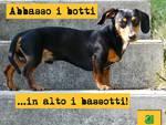 """Legambiente Piemonte: """"ok il divieto dei botti di Capodanno, ora le ordinanze siano fatte rispettare"""""""