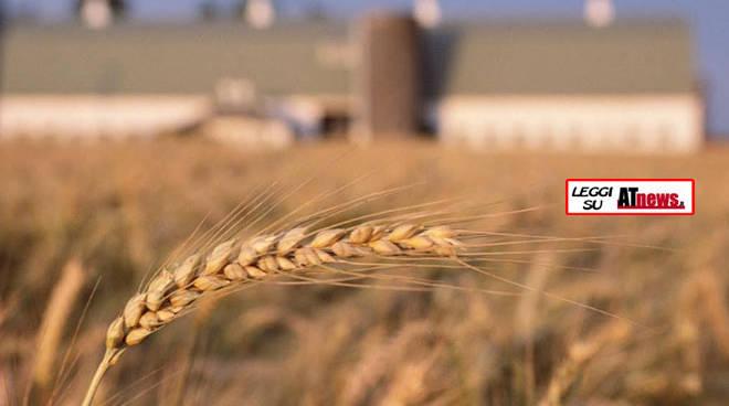 Agricoltura: COMPAG rinnova il monito sulle fake news: lo standard alimentare Italiano è tra i più alti