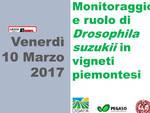 """Costigliole d'Asti: venerdì il convegno """"Monitoraggio e ruolo di Drosophila suzukii in vitigni piemontesi"""""""
