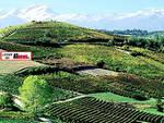Il Piemonte meta per i turisti italiani: il settore continua a crescere trainato dal mercato interno