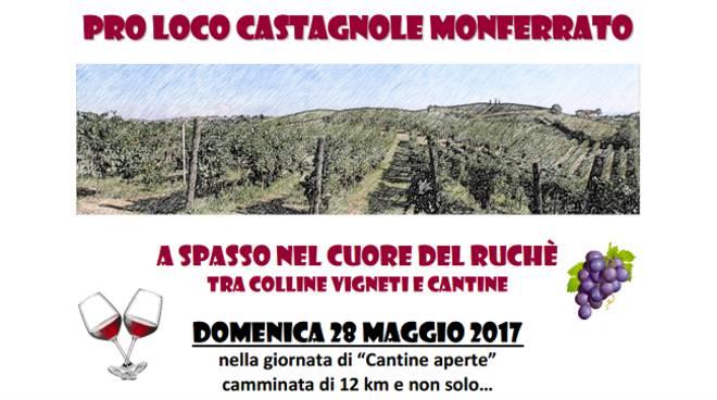 Domenica a Castagnole Monferrato si cammina nel cuore del Ruché