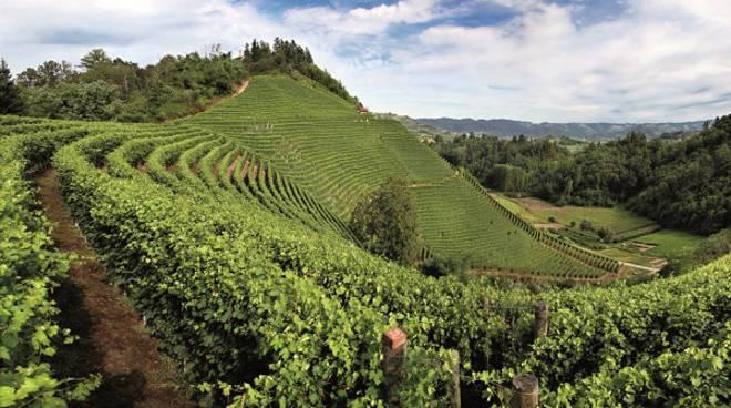 Tra le Alpi e le Langhe: il piano di azione del Comitato per il Turismo Outdoor in Provincia di Cuneo