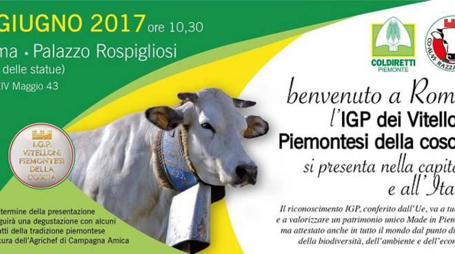 """Coldiretti Asti: l'Igp """"Vitellone Piemontese"""" si presenta a Roma"""