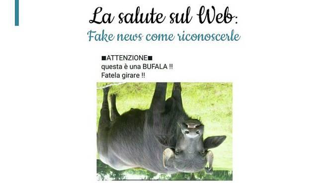 bufale web