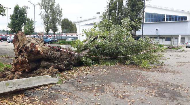 danni vento asti 29102018