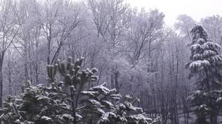 neve sull'astigiano 2018