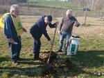 Parco della salute di Asti: piantate 25 nuove piante