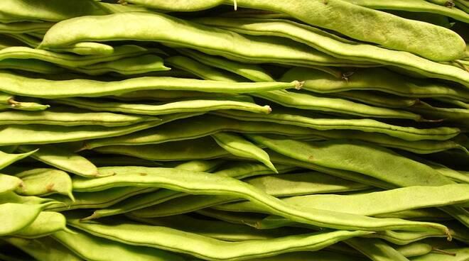 fagioli Fonte foto: https://pixabay.com/it/fagioli-verdure-verde-mercato-sano-4785/