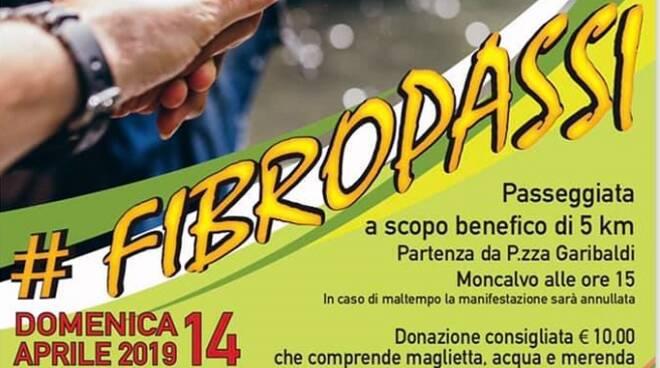 fibropassi