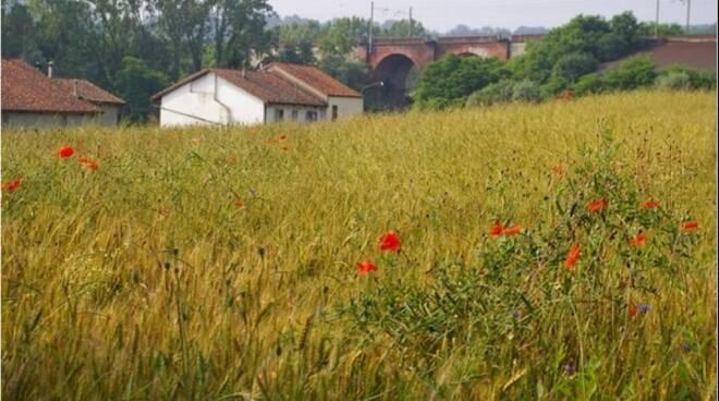 camminata ecologica villafranca