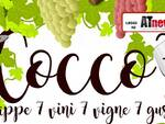cocco sport 2019