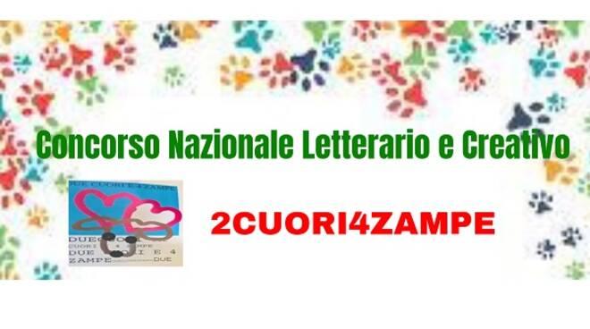concorso 2cuori4zampe