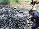 carabinieri forestali rifiuti isola