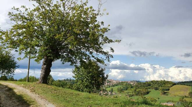 Sentiero Chiusano Camerano Casasco