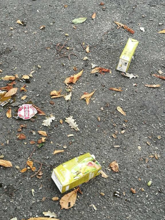 Degrado giardini pubblici 29/09/2019