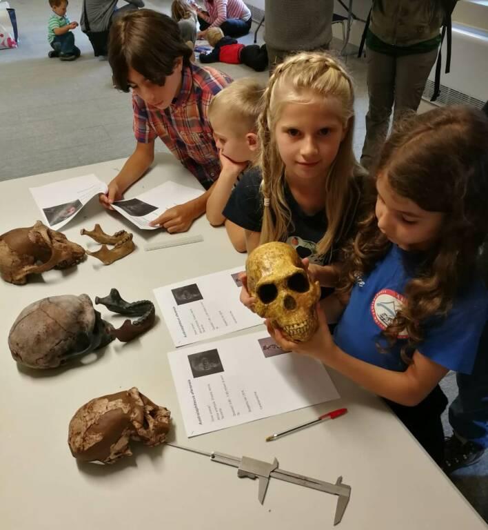 museo paleontologico studenti