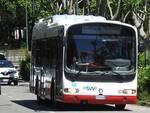 asp bus