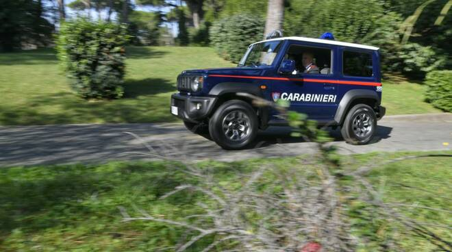 carabinieri Forestali repertorio