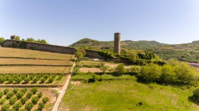 la torre di cortemilia