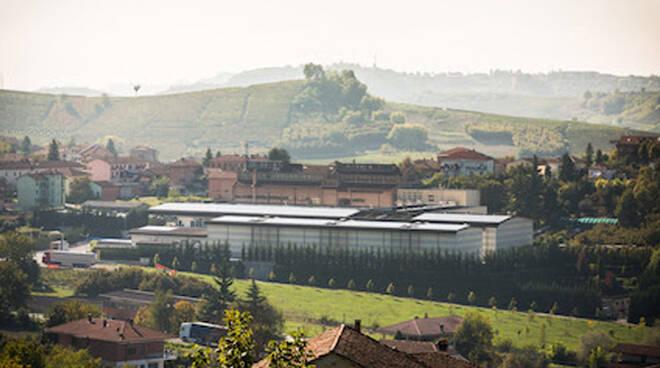 mondo del vino a Priocca (CN)