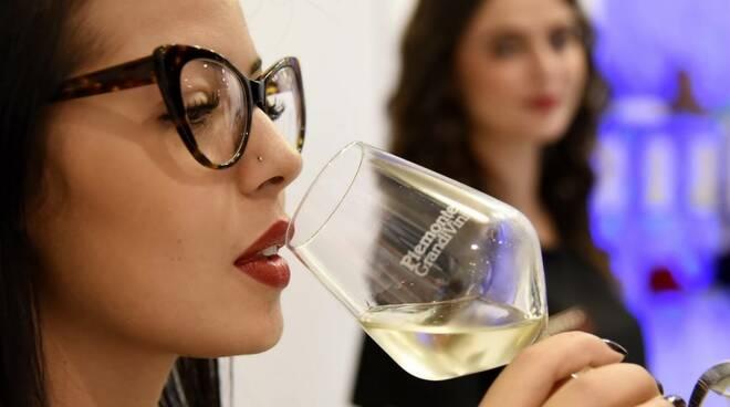 piemonte wine week