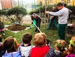 """Alba: un nuovo albero donato dal Comune alla Scuola """"Pollicino"""" per la Festa degli Alberi"""