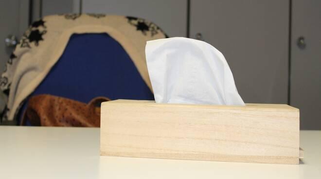 scatola di fazzoletti orecchio di venere
