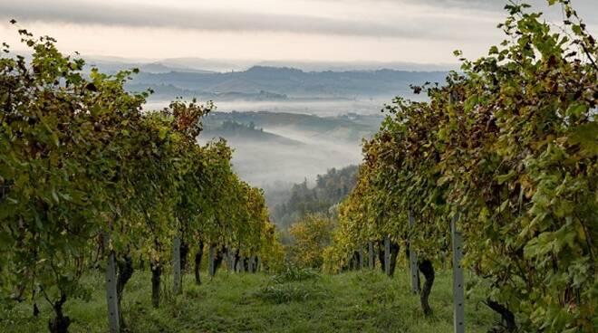 turismo langhe monferrato roero