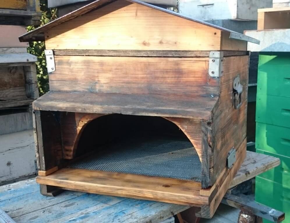 presepi cocconato api