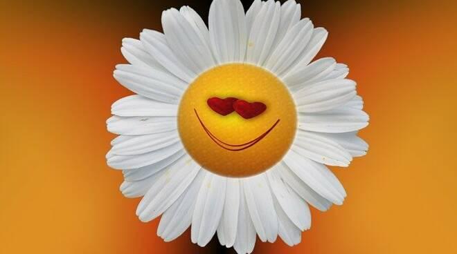 sorriso pixabay