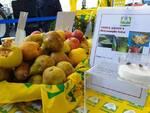 Frutta rovinata dalla Cimice Asiatica - Coldiretti Piemonte